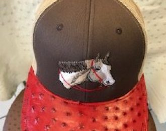 FULL QUILL Pinto HH CAP